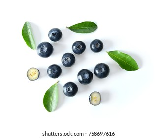 Blueberry collection isolated on white background