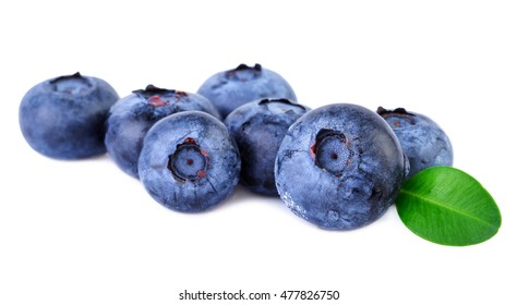 Blueberry fresh blueberries on white