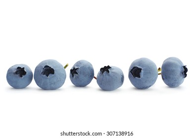 Blueberry fruit closeup isolated on white