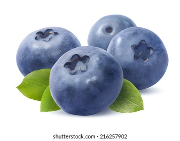 Blueberry group isolated on white background as package design element