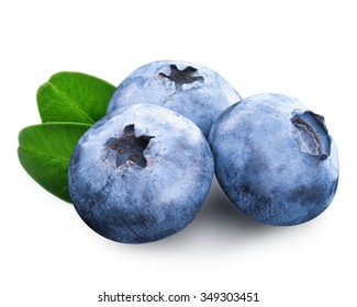 blueberry isolated Clipping Path