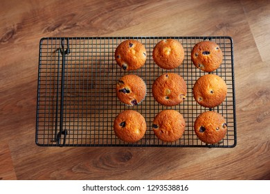 Blueberry muffins on a wire rack, against an oak floor background
