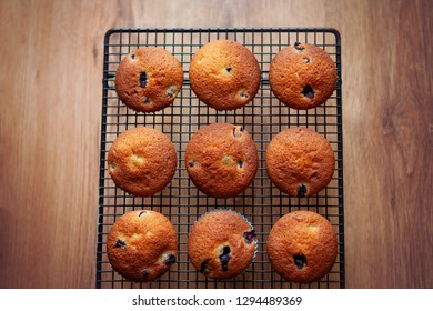 Blueberry muffins, taken from above, on a wire rack against an oak wooden floor background