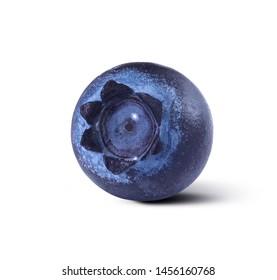 Blueberry single isolated on white