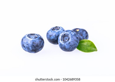 Blueberry still life closeup