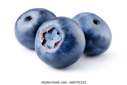 Blueberry. Three fresh blueberries isolated on white background. With clipping path.