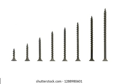 blued screws on an isolated white background located in size