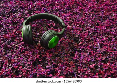 bluetooth earphones on the soft top of the purple grass