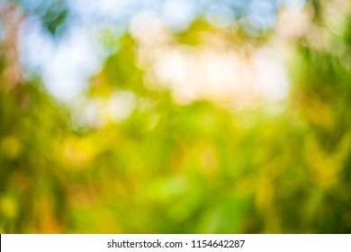 Blur abstract swirly bokeh background