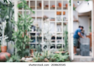 blur background cactus glass green house hothouse plant nusery gardener outdoor interior front view entrance.