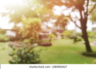 Blur background of park or garden with sun light in summer season