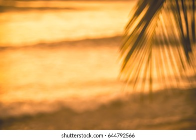Blur beautiful nature green palm leaf on tropical sunset beach with bokeh light wave abstract background. Copy space of summer vacation and business travel concept. Vintage tone filter color style.
