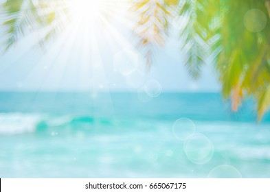 Blur beautiful nature green palm leaf on tropical beach with bokeh sun light wave abstract background.