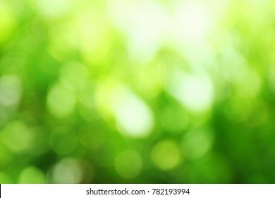 blur with bokeh green color abstract bacground