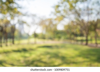 Blur of city park bokeh background in summer, green nature concept