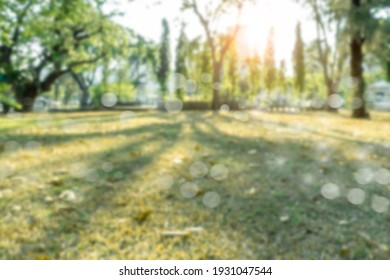 Blur of city park bokeh background in summer photo