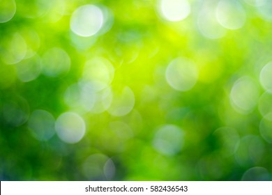 Blur green tree leaves with bokeh background, abstract greenery spring nature background