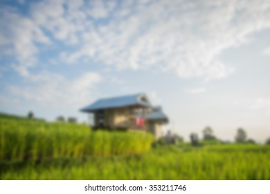 blur house in rice field in the middle of a mountain background