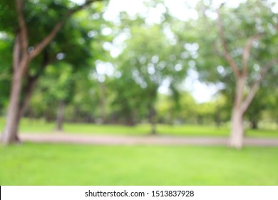 Blur of the nature of garden