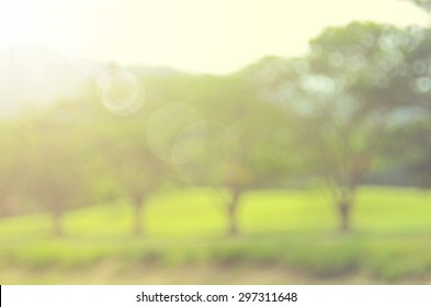 Blur nature park with green tree abstract background.Retro color style.