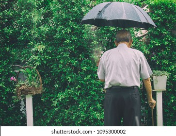Blur and noise Vintage picture decoration of old man stand on the wet floor with caution in the green garden with his wooden stick and black umbrella while heavy rainy with copy space