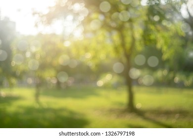 Blur park with sun light abstract background