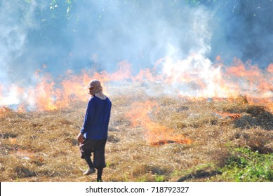 a blur picture of a famer who is burning his land for prepare his plantation