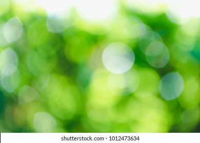 Blur smooth green background with bokeh of nature sun light through the tree and leaves for natural background