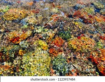 Blured nature background - multicolored stones and coral under transparent water and foam of the surf on Red Sea shore in Akaba, Jordan, Middle East, Western Asia