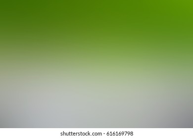 Blurred abstract background of Trees, shrubs along the fence