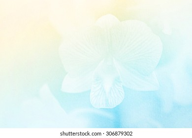 blurred artistic orchid with color filter , grunge paper texture