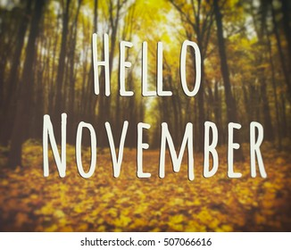 "Blurred autumn landscape of forest background with text ""Hello November"""