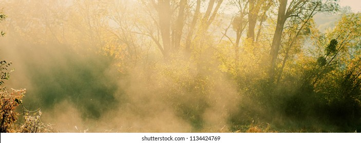 blurred background, autumn morning mist and sunbeams on the background of trees. Horizontal banner.