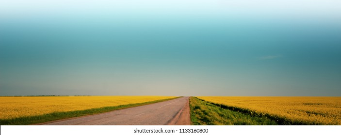 blurred background, blooming field and road, rural landscape, panorama. Web banner for your design.