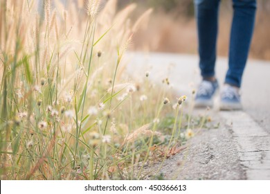 Blurred Background grass flower on the side road and walking women jeans and sneaker shoes