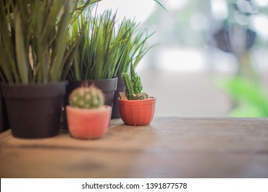 Blurred background of interior room (bakery coffee restaurant) by bringing a vase, wooden table Bookshelves, for the beauty of the shop and impressing those found