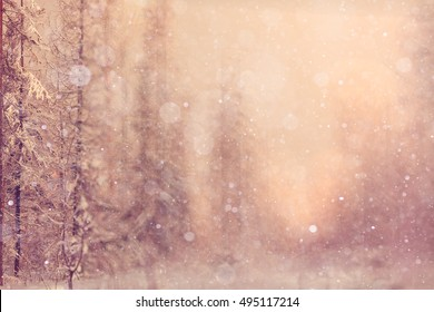 blurred background landscape winter sunny cold day Snow