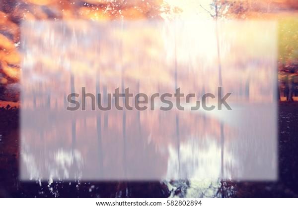 blurred background Orange autumn alley park trees