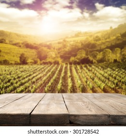 blurred background of vineyard and table and countryside