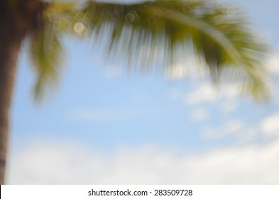 Blurred beach with palm leaf abstract background.