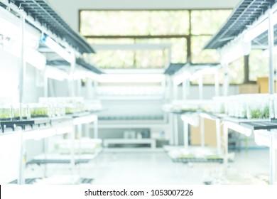 Blurred biology laboratory.