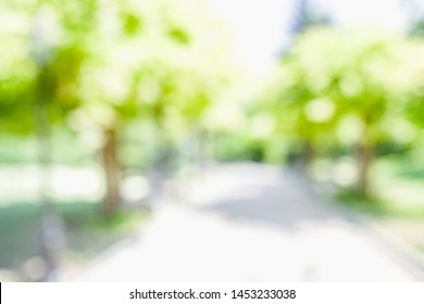 BLURRED CITY PARK BACKGROUND, GREEN TREES BLUR