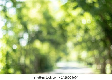 Blurred City Stree Bokeh Leaf Background Green Nature
