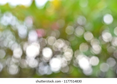 Blurred defocused colorful bright background with white hexagon bokeh for abstract background concept.
