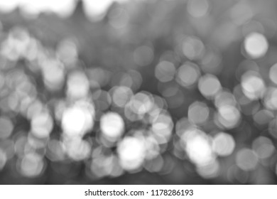 Blurred defocused scintillate abstract black and white background concept.