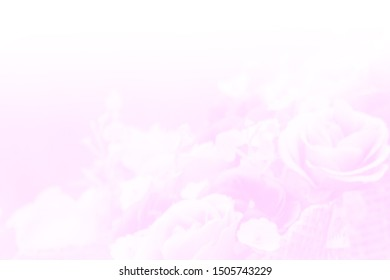 blurred fabric pink rose flower bouquet background