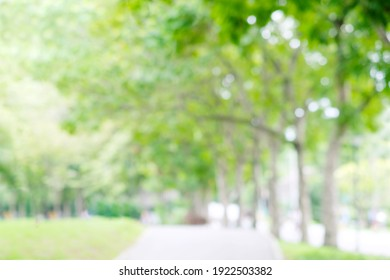 Blurred garden in spring nature outdoor background, Blur green tree park in summer background, banner, Defocus spring foliage countryside with abstrct bokeh light wallpaper, poster