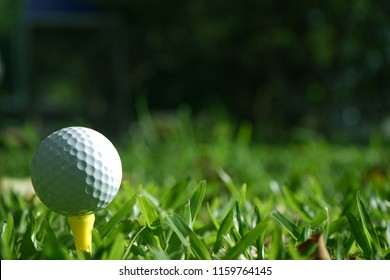 Blurred golf ball on tee in beautiful golf course at sunset background.