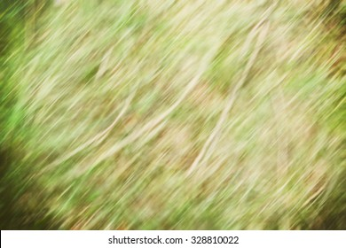 blurred grass with brushed abstract green background