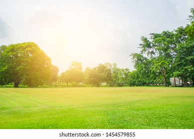 Blurred green lawn and sun light